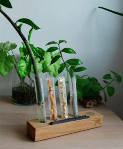 dřevěný stojan na přírodní karrtáčky a další produkty pro zdraví nebo květiny - dva