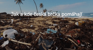 Jak a kde česká brčka pomáhají ?