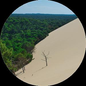 rawtoothbrush má pozitivní dopad na přírodu