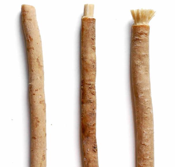 kořeny salvadory perské jsou také známé jako přírodní kartáček na zuby